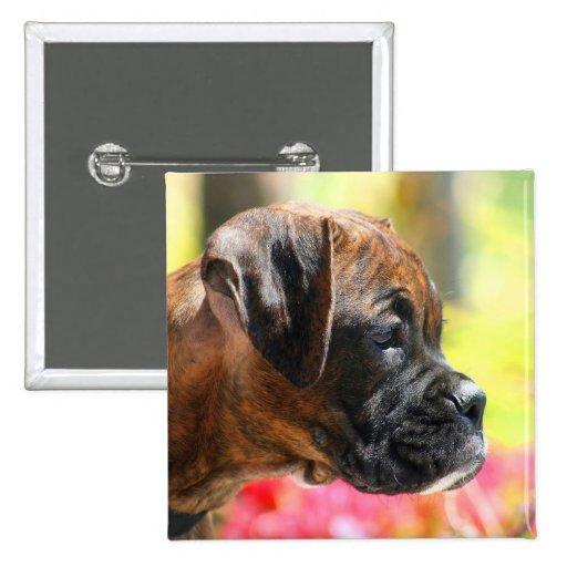 Brindle Boxer puppy button