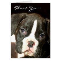 Brindle boxer puppy card