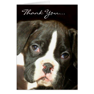 Brindle boxer puppy card