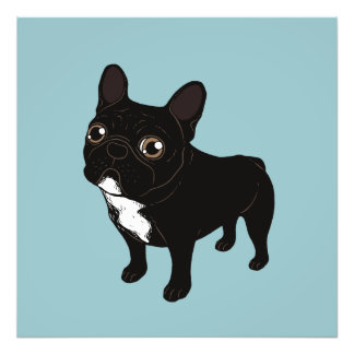 Brindle Frenchie likes to go for a walk Photo Print