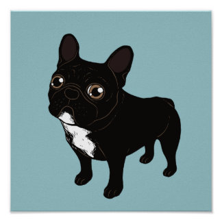 Brindle Frenchie likes to go for a walk Poster