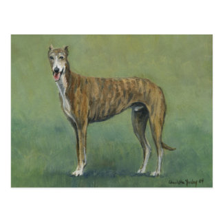 """Brindle Greyhound"" Dog Art Postcard"
