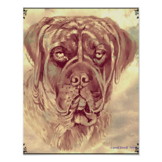 Brindle Mastiff Poster by Carol Zeock