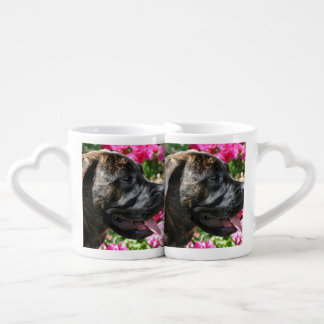 Brindle Mastiff puppy Coffee Mug Set