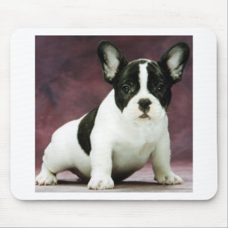 Brindle_pied_french bulldog puppy mouse pad