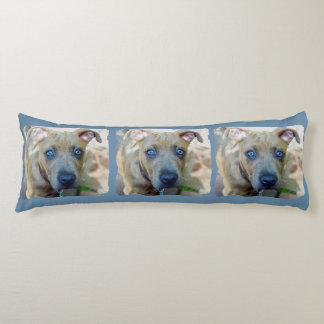 Brindle Pit Bull Puppy by Shirley Taylor Body Pillow