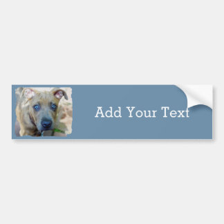 Brindle Pit Bull Puppy by Shirley Taylor Bumper Sticker
