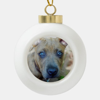 Brindle Pit Bull Puppy by Shirley Taylor Ceramic Ball Christmas Ornament