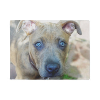 Brindle Pit Bull Puppy by Shirley Taylor Doormat