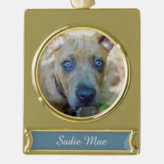 Brindle Pit Bull Puppy by Shirley Taylor Gold Plated Banner Ornament