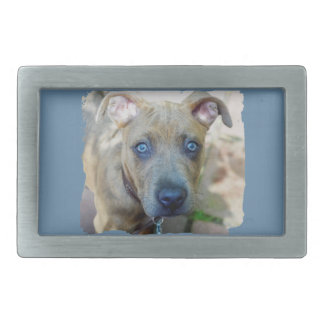 Brindle Pit Bull Puppy by Shirley Taylor Rectangular Belt Buckle