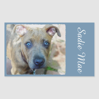 Brindle Pit Bull Puppy by Shirley Taylor Rectangular Sticker