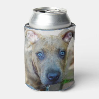 Brindle Pit Bull Puppy Can Cooler