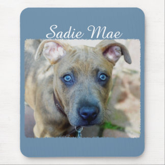 Brindle Pit Bull Puppy Mouse Pad