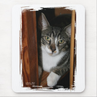 Brindled and white cat framed in wood mouse pad