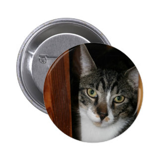 Brindled and white cat framed in wood pinback button