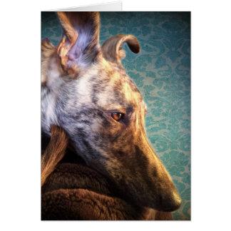Brindled Lurcher Greyhounds Card