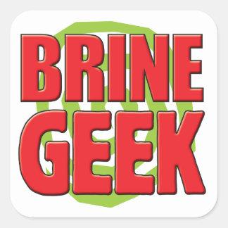 Brine Geek Square Sticker