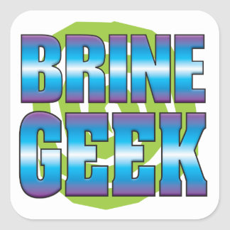 Brine Geek v3 Square Sticker