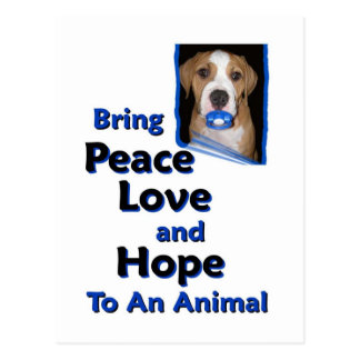 bring peace love and hope to an animal postcard