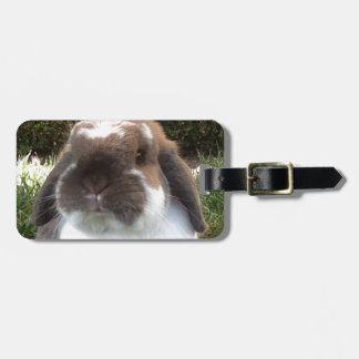 Bring some furriness into your life! bag tag
