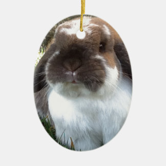 Bring some furriness into your life! ceramic ornament