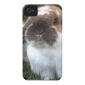 Bring some furriness into your life! iPhone 4 case