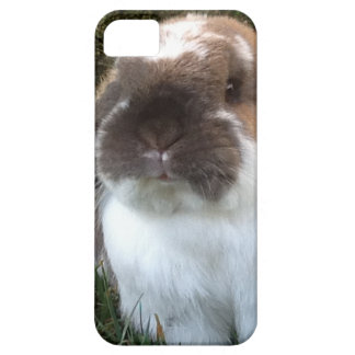 Bring some furriness into your life! iPhone SE/5/5s case