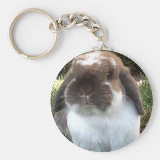 Bring some furriness into your life! keychain