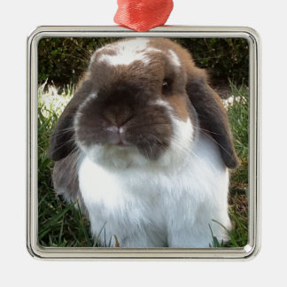 Bring some furriness into your life! metal ornament