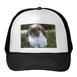 Bring some furriness into your life! trucker hat