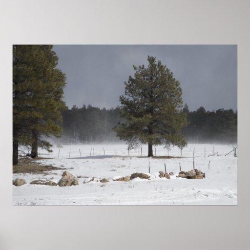Brisa del invierno póster