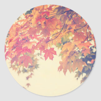 Brisa del otoño pegatina redonda