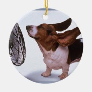 Brisa - perro y fan ornatos