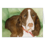 Brisco in Bed Stationery Note Card