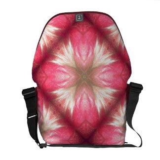 Brisk Freestyle Messenger Bag