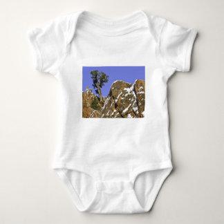 Bristlecone Pine Baby Bodysuit