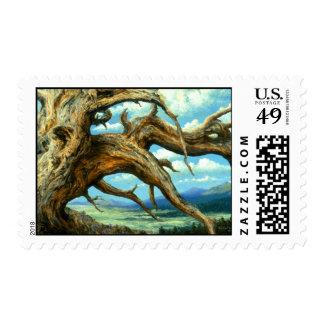 Bristlecone Pine Stamp