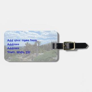 Bristlecone Pine Tree Bag Tag