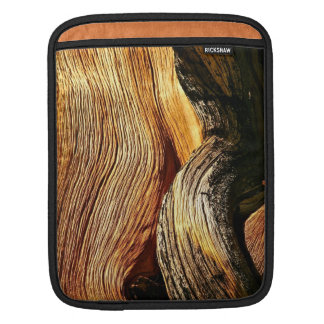 BRISTLECONE PINE TREE BARK DETAIL SLEEVE FOR iPads