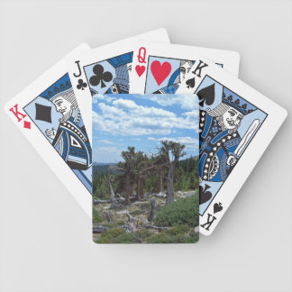 Bristlecone Pine Tree Bicycle Playing Cards