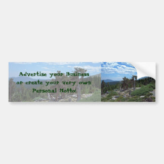 Bristlecone Pine Tree Car Bumper Sticker