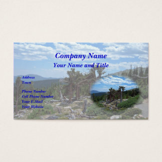 Bristlecone Pine Tree Business Card