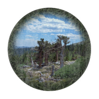 Bristlecone Pine Tree Cutting Board