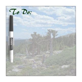 Bristlecone Pine Tree Dry Erase Board
