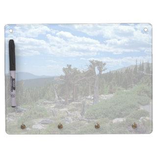 Bristlecone Pine Tree Dry Erase Board With Keychain Holder