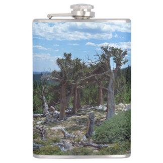 Bristlecone Pine Tree Flask