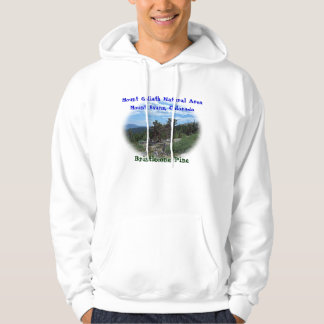 Bristlecone Pine Tree Hooded Sweatshirt