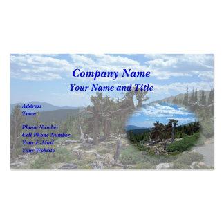 Bristlecone Pine Tree Mount Evans Colorado Business Card Templates