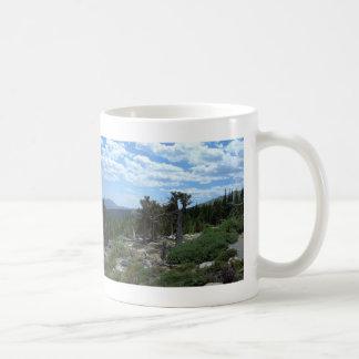 Bristlecone Pine Tree, Mount Evans, Colorado Coffee Mugs